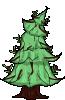 pinetree2_2_1024.png