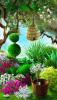 bushes2.png
