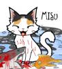 MisuShark1.png